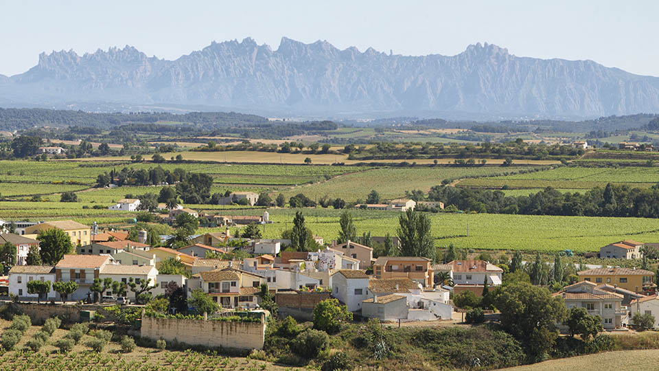 Day trip Penedes and Garraf