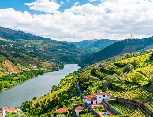 Douro wine region