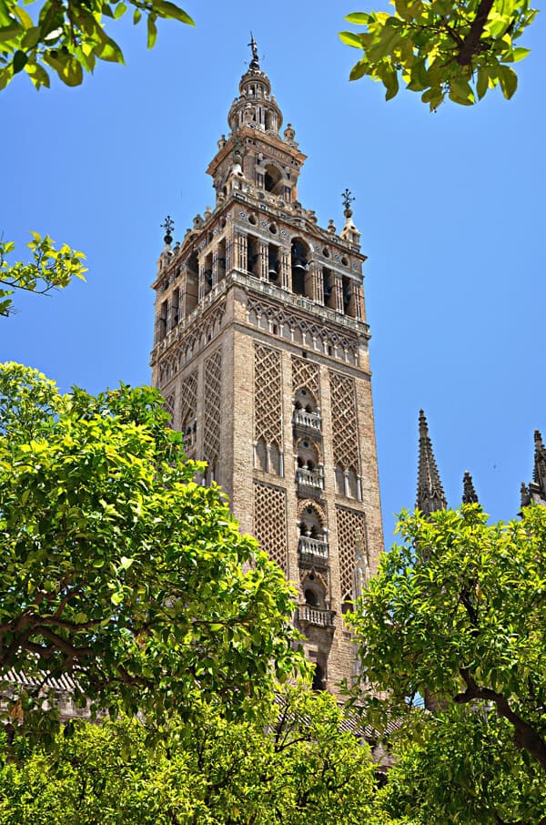 The Cathedral of Sevilla. Spain